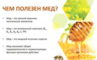 Кефир с медом для похудения