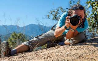 Сонник фотографировать природу