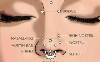Как называется кольцо в нос