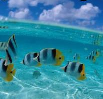 Морская вода для лица