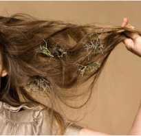Как улучшить состояние волос в домашних условиях