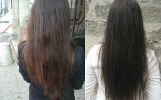 Хочу подстричь волосы