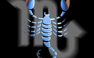 Вся правда о скорпионах